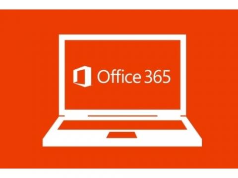 office_portfolio